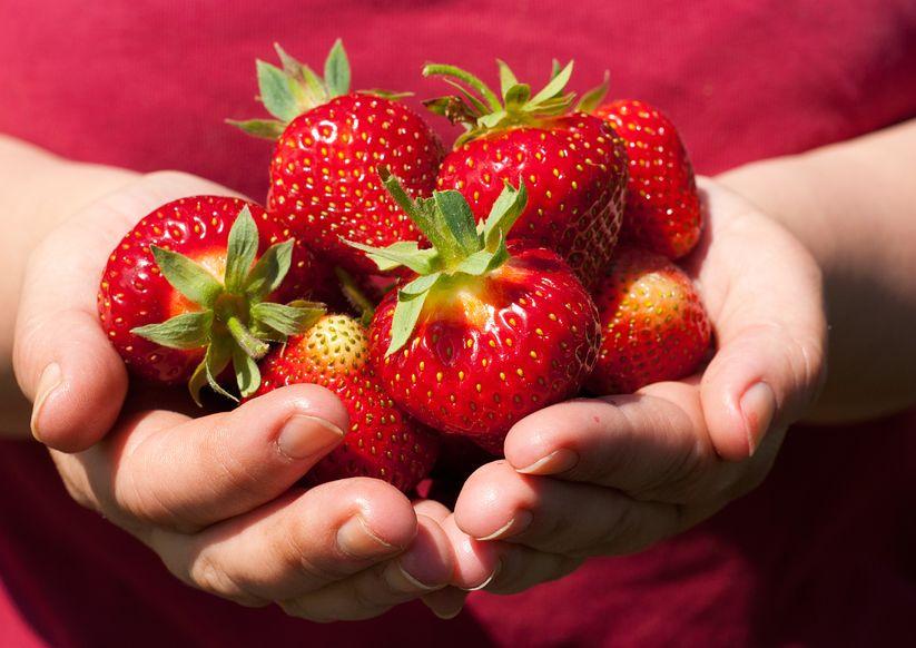 Fragole infiammazione e metabolismo la frutta buona che fa bene alzheimer eurosalus - Frutta che fa andare in bagno ...