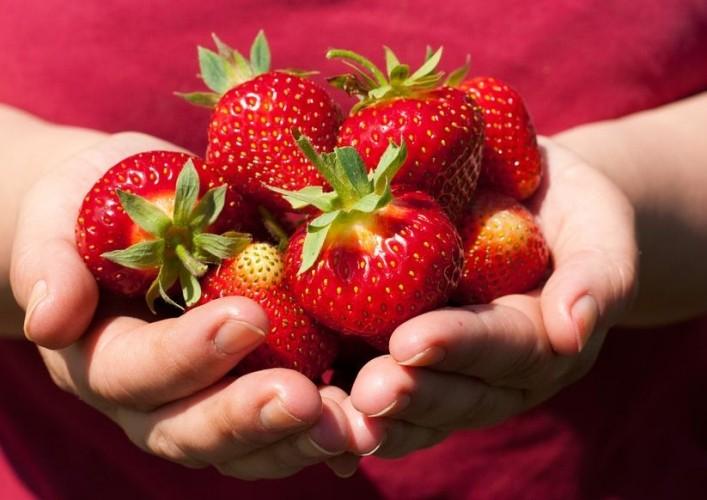 Tag infiammazione eurosalus - Frutta che fa andare in bagno ...